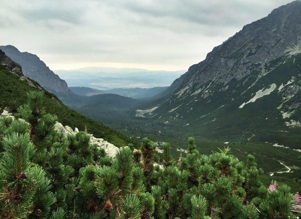 Hohe Tatra Wandern Slowakei