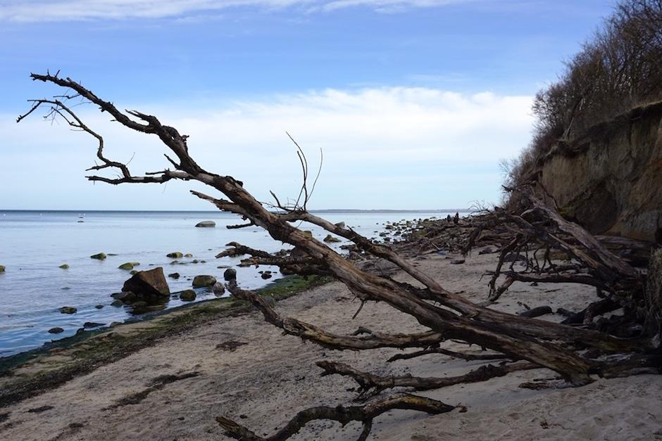 Ausflugsziele Ostsee