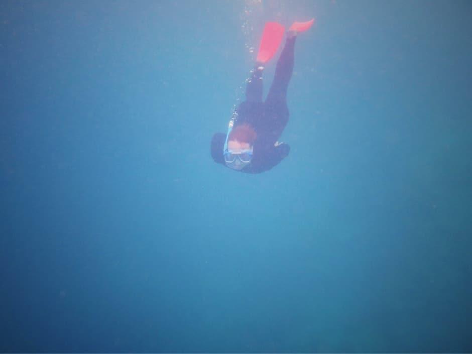 Great Barrier Reef Schnorcheln