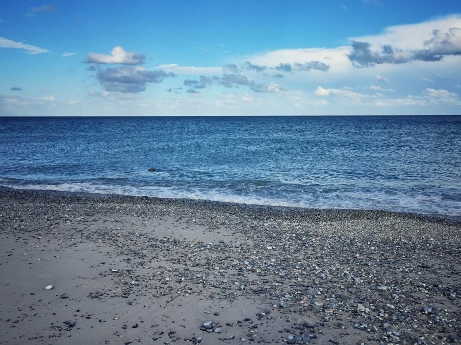Helgoland Düne Aade Robbe
