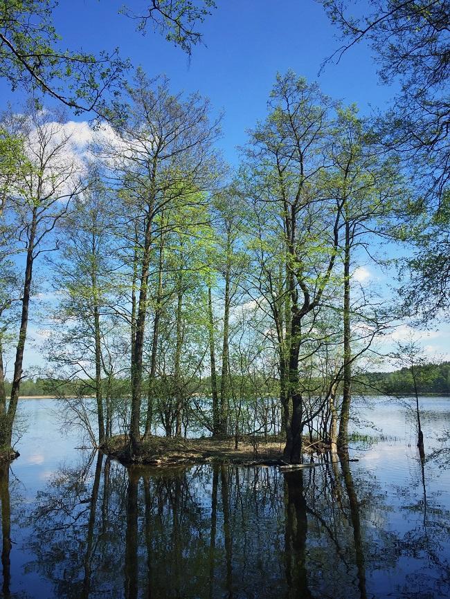 Aukštaitija-Nationalpark Litauen