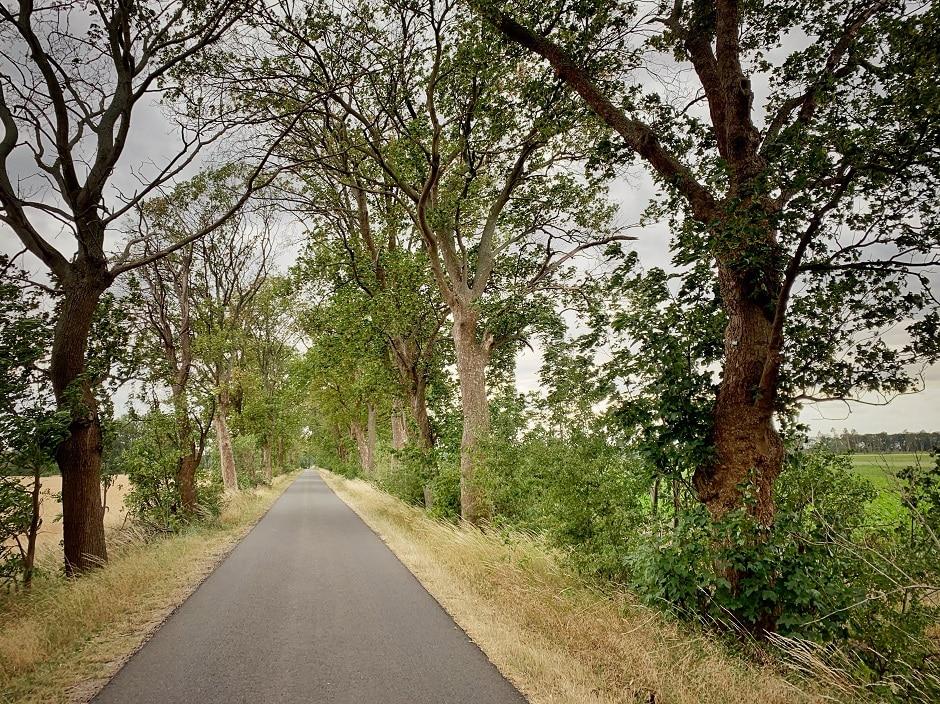 Fontane-Radweg