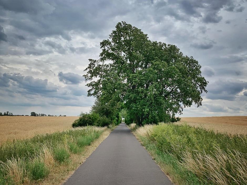 Fontane-Radweg Nauen
