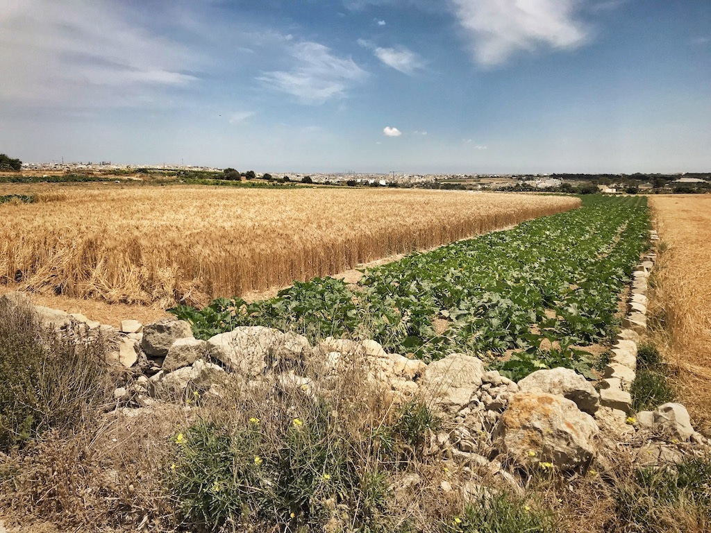 Ländliches Malta