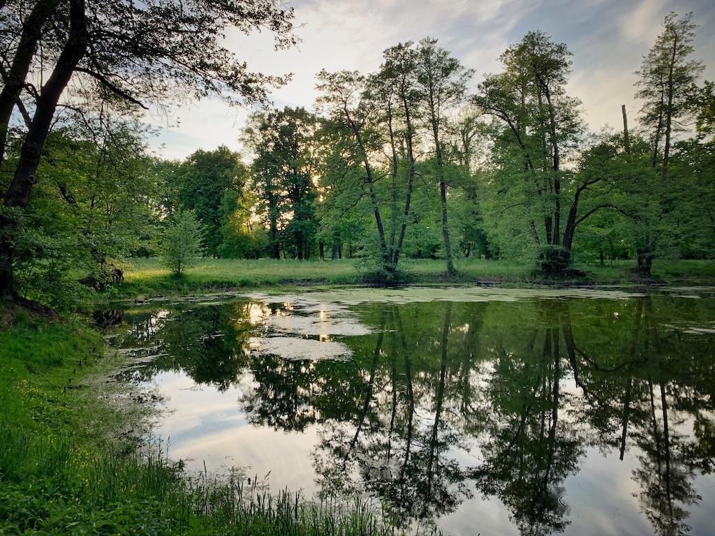 Schlosspark Baruth