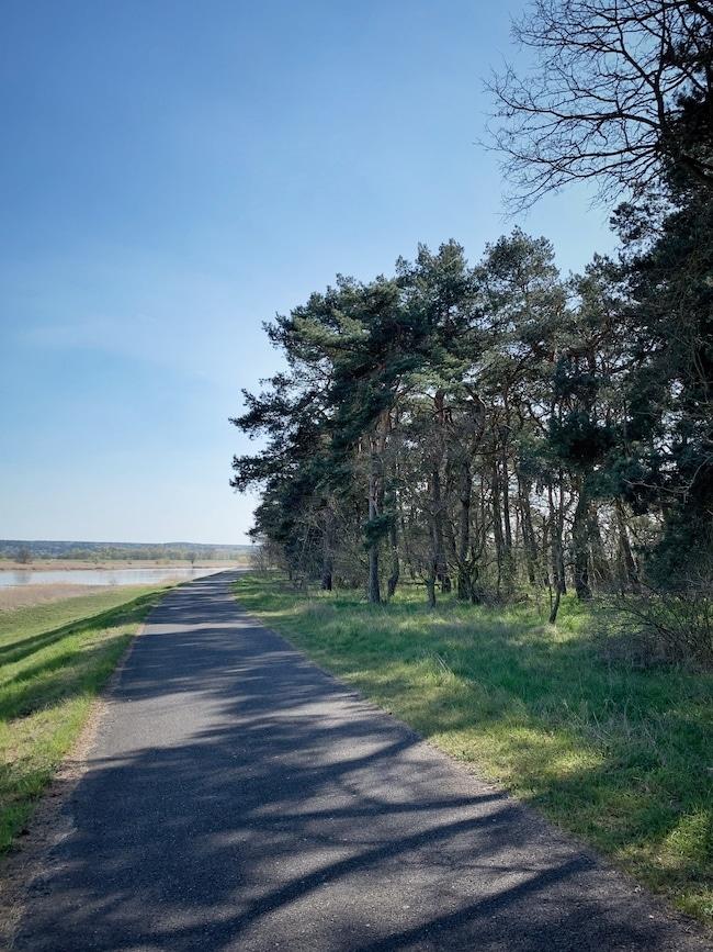 Oderradweg Stolzenhagen